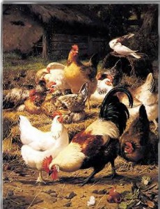 Chickens in history